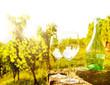 Leinwandbild Motiv Weinverkostung im Weinberg