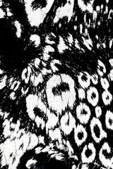 texture cut textile fabrics monochrome style