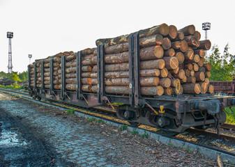 Güterwagon mit Holz beladen