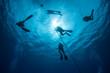 Scuba Diving - 65169650