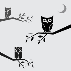 Vector image of an owls perched on branches