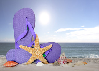flip flops with starfish