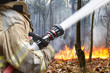 firefighters helped battle a wildfire - 65179654