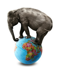 isolated elephant africa globe