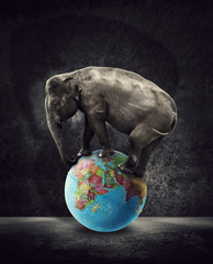 elephant standing on world