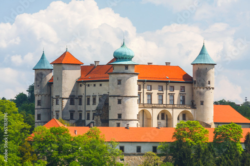 View of Nowy Wisnicz castle, Poland - 65183896