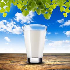 Milk On Wood Table
