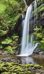 Falls Russel Tasmania Vertical