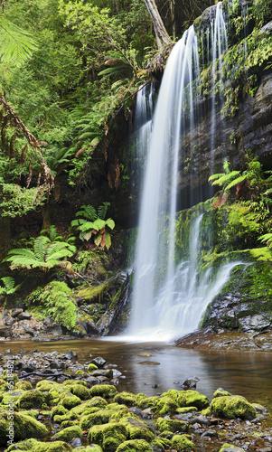 Falls Russel Tasmania Vertical - 65184821