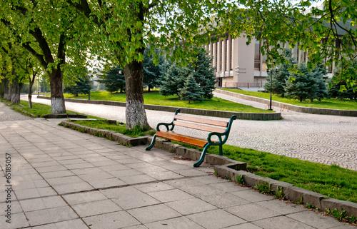 Foto op Plexiglas Landschappen long tree alley