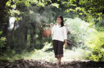 Asian woman working in the rainforest
