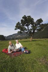 Österreich,Karwendel,Ahornboden,Senior Paar sitzt in der Wiese mit Karte