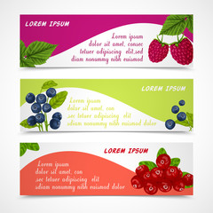 Berries banners set