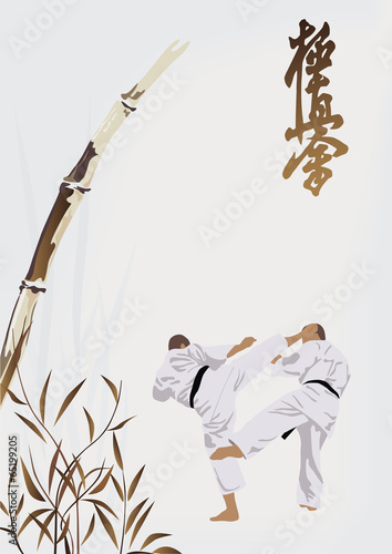 karate occupations - 65199205