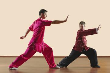 Kung Fu,Changquan,Gongbu,Lange Faust Style,Kung -Fu- Lehrer und Jungen (10-11)