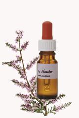 Flasche mit Bachblütentropfen, Heather (Calluna vulgaris)