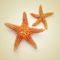 starfishes on a beige background, with a retro effect