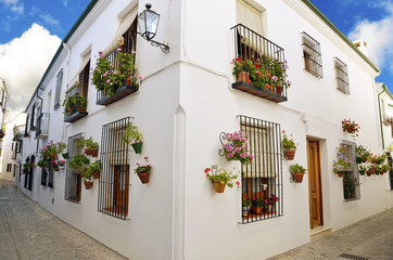 Street scene with pots of flower in the wall, Cordoba, Andalusia