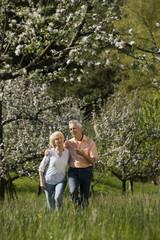 Deutschland,Baden Württemberg,Tübingen,älteres Paar zu Fuß in ländlichen Landschaft
