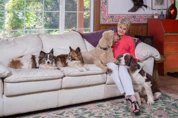 Adoring The Dogs