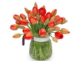 Букет красных тюльпанов к кувшине на белом фоне