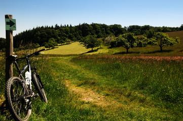 Mountainbike-Trail Naturpark Neckartal-Odenwald