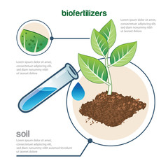 plant and fertilizer