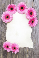 pink gerberas and empty sheet on a wooden board, vintage style
