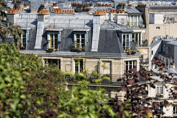 paris roofs and cityview
