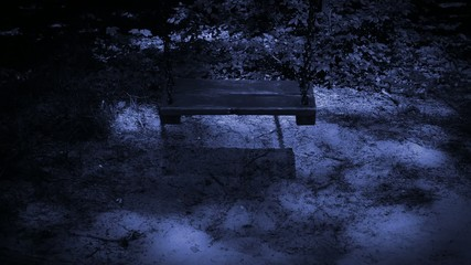 Old empty swing at night.
