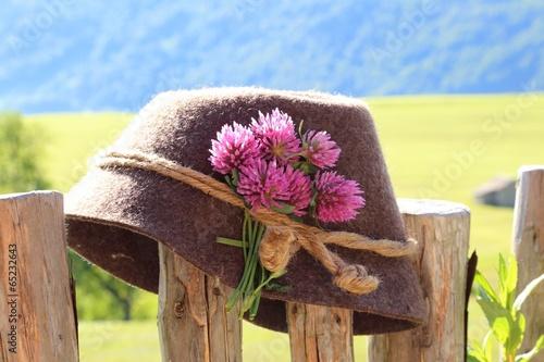 Hut auf Zaun © monropic