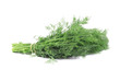 Bunch fresh dill herb close up.