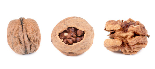 Three walnuts.