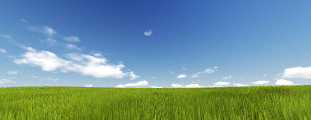 Panorama of Green Grass with cloud and the blue sky. 3d render