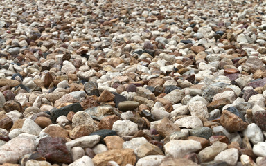 Wet pebble in perspective