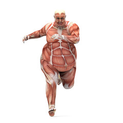 anatomy obese man running