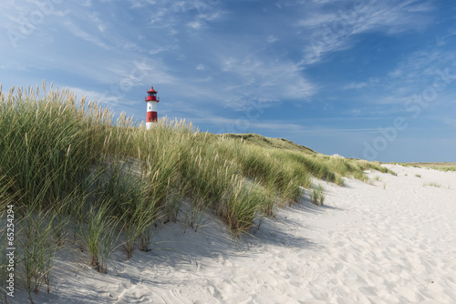 Foto op Aluminium Vuurtoren / Mill Lighthouse on dune horizontal