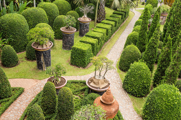 beautiful walkway in the garden