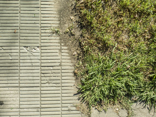 Límite de sendero de baldosas con césped.