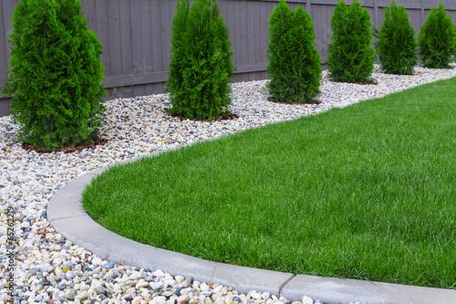Papiers peints Vegetal Fresh green grass