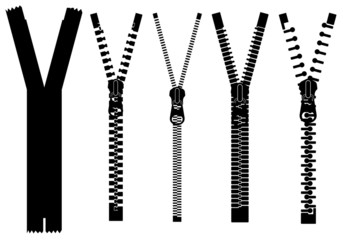 Set of different zippers isolated