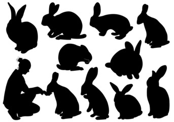 Set of different rabbits