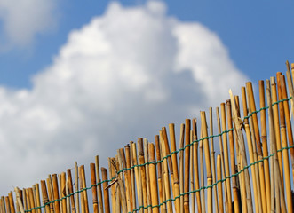 bamboo fence with blue sky and clouds in the background