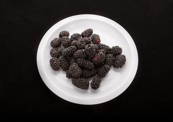 Blackberries on White Plate on Black Background