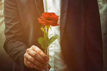 Man offers a rose