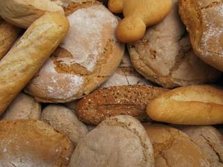 Variedad y tipos de diferentes  panes.