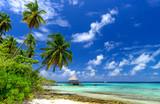 einsamer Strand auf den Malediven - Fine Art prints
