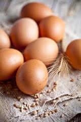 fresh brown eggs, wheat seads and ears