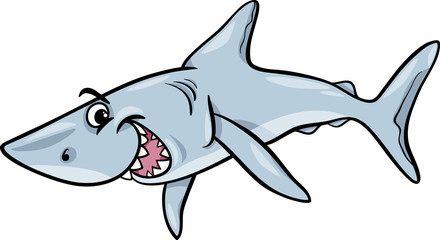 shark animal cartoon illustration