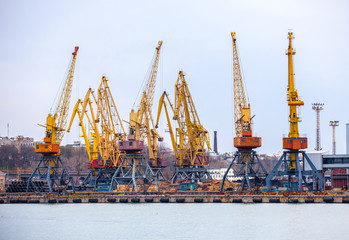 elevating cranes in port